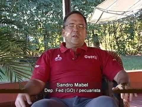 sandromabel