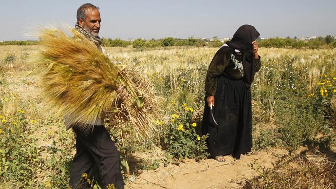 gaza-farmer.si