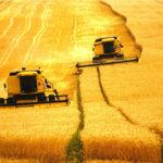 Agricultura: por que Brasil aposta em modelo decadente