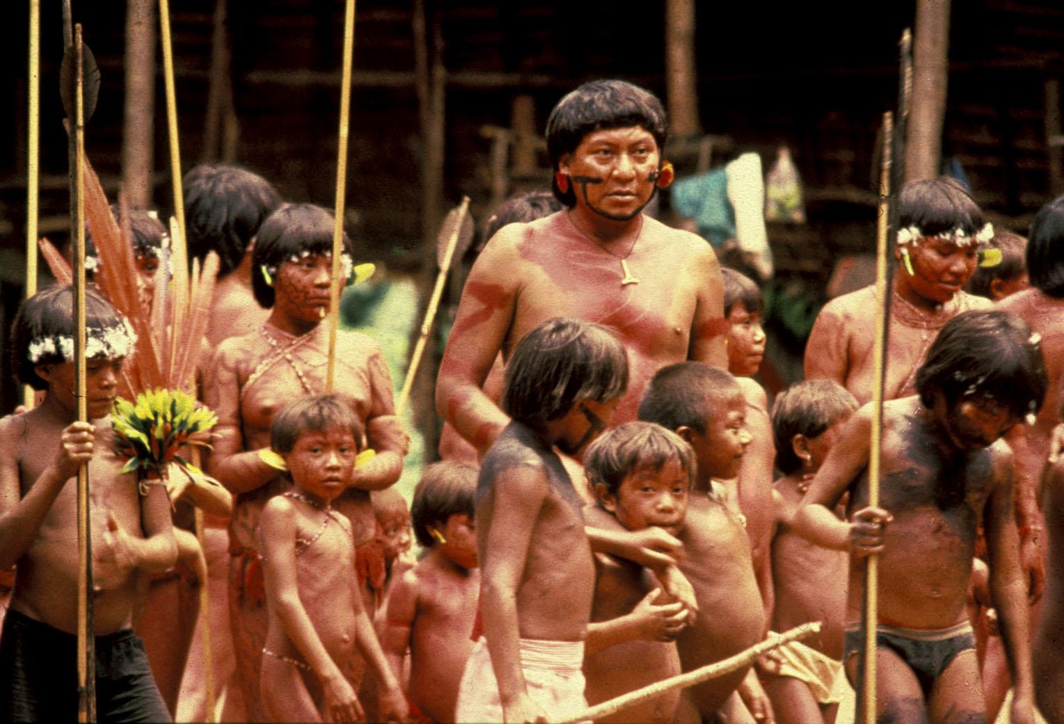 Amazonjungiesex hentai tube