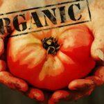 Dez documentários que irão mudar suas ideias sobre alimentação