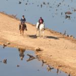 Crise de água em SP: outro sistema entra em colapso