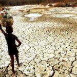 Desertificação, mais uma crise omitida pelos jornais