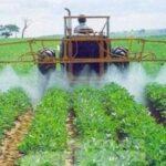 Um freio na tragédia brasileira de agrotóxicos?