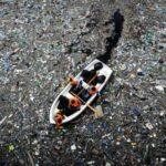 Esplendor e dramas nas águas oceânicas