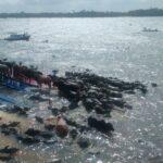 Numa cena, o naufrágio do Brasil extrativista