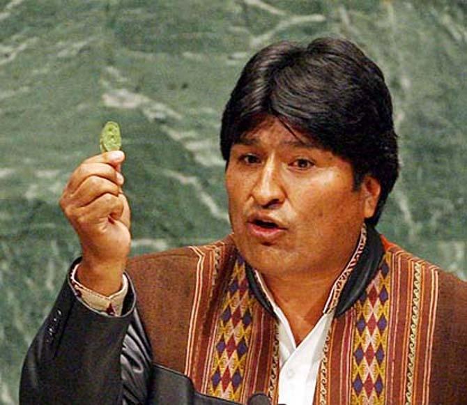 """Evo Morales exibe, na Assembleia Geral da ONU, folha de coca. Presidente recusou-se a manter política de erradicação violenta dos cultivos, """"exigida"""" pelos EUA"""