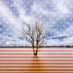 Os EUA deixam o Acordo de Paris sobre o clima. E agora?