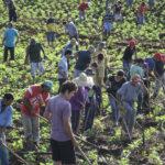 Campo: cresce a resistência ao modelo ruralista