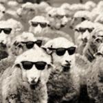 Sob risco de conformismo radical