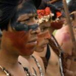 Jejuvy: assim os guaranis recuperam a palavra
