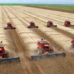 Mato Grosso: no rastro da soja, o deserto verde